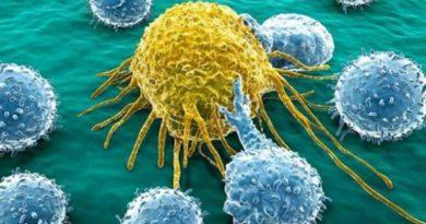 Una nueva vacuna contra el cáncer, que promete ser efectiva, comienza a probarse con humanos este año